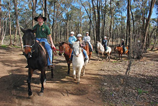 Ironbark Riding Centre