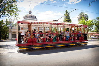 Bendigo Tramways Vintage Talking Tram Tour