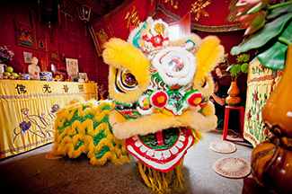 Chinese Lion at the Bendigo Joss House Temple